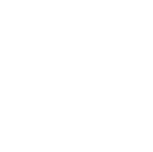 The Dead Freights Logo white